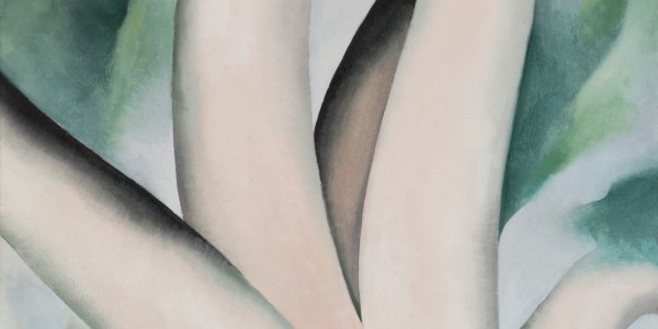 A painting titled Birch Trees at Dawn on Lake George by Georgia O'Keeffe
